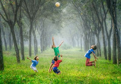 Picture of children playing with a ball in the grass with surrounding trees
